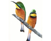 Bee Eater painting - Print of watercolor painting  A4