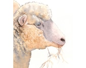 Lamb Painting L007 - print of watercolor painting A4