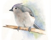 Titmouse painting - ORIGINAL watercolor painting A5