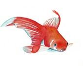 Fish painting -  Original watercolor painting