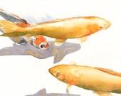 Koi Painting - print of watercolor painting FISH art - 5 by 7 print