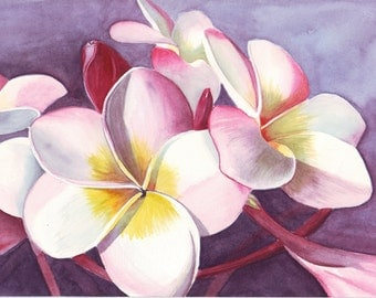 Frangipani Painting flower ART watercolor painting print - 5 by 7 print