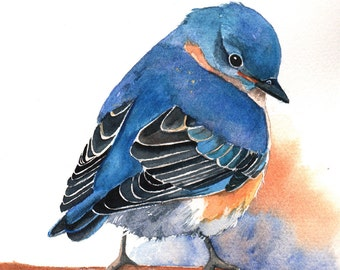 Bluebird Painting -B029-  Archival Print of bird watercolor painting 5 by 7 print