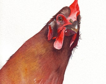 Watercolor Painting - Chicken watercolor painting Bird watercolor PRINT of watercolor painting A4 wall art print - bird art print