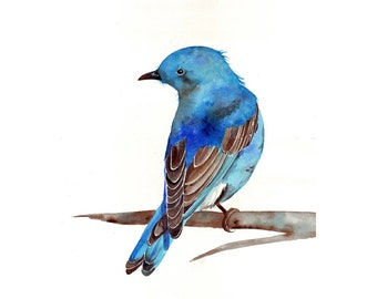 Bluebird Painting ART  Archival print of watercolor painting A4 print wall art print - bird art - art print - wildlife print