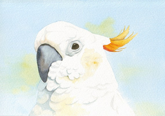 Cockatoo Painting print of watercolor painting - 5 by 7 print wall art print - bird art - art print - wildlife print