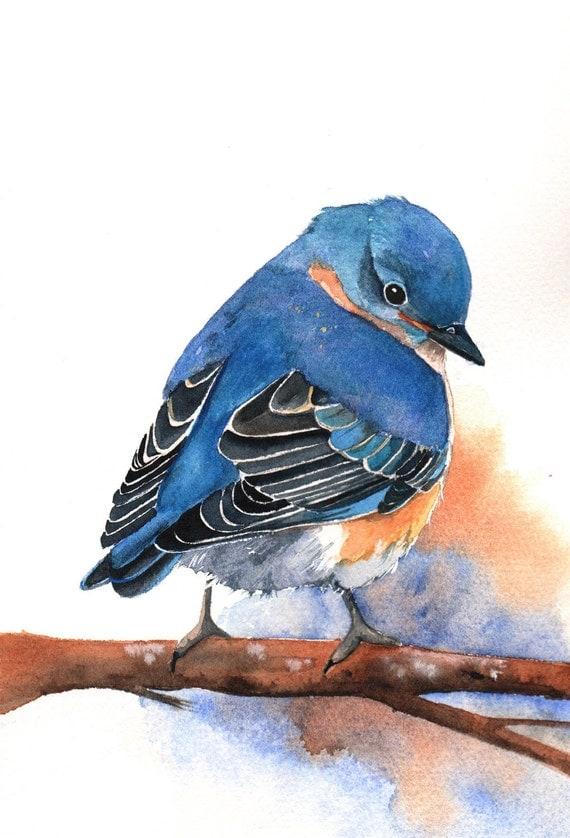 Resource image throughout printable birds