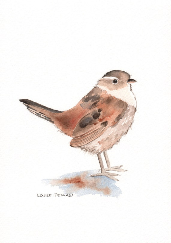 Wren painting ORIGINAL watercolor painting