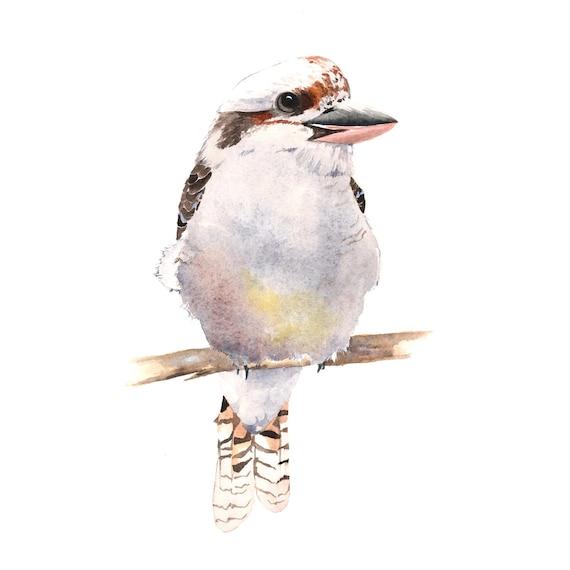 Kookaburra Painting  - print of watercolor painting - 5 by 7 print wall art print - bird art - art print - wildlife print