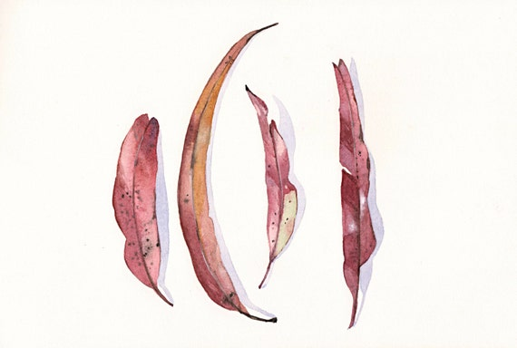 Eucalyptus Leaves Painting -E022- print of watercolor painting A4