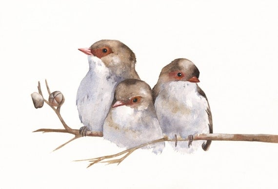 Wrens painting - W040-  bird wildlife art nature - Print of watercolor painting