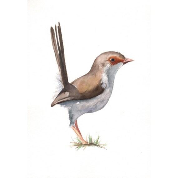 Wren painting - ORIGINAL watercolor painting