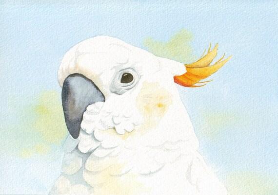 Cockatoo Painting    ORIGINAL watercolor painting