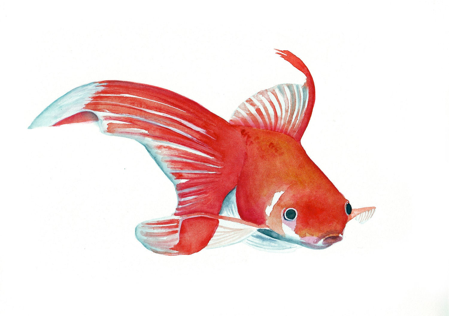 Fish painting original watercolor painting by louisedemasi for Watercolor fish painting