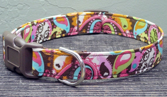 Pretty Paisley Bright Dog Collar