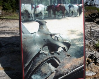 Old Western Saddle With Trail Horses Photo Card