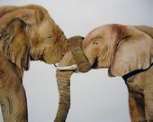 Elephants Entwined