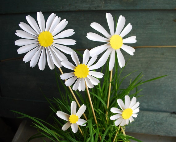 Daisy Paper Flowers, Spring Blossoms,Birthday Gift, Daisies, Origami Flowers to add to a Bouquet