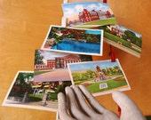 6 Vintage New York Postcards, Unused. Scenes of Albany