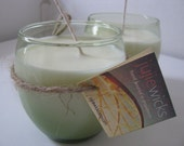 Galway Green Soy Candle Set (Viva)