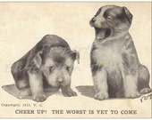 1 Old Fashioned Looking Standard Postcard - Cute Puppies - Dogs - Funny Quips
