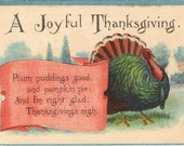 Antique Traditional Thanksgiving Postcard Greetings Tom Turkey