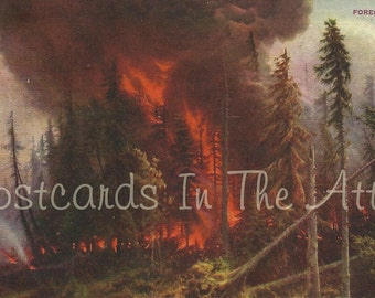 Forest Fire - Bright Red Flames - Very Rare Vintage Postcard
