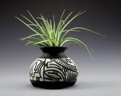 Black and White Tillandsia Vase (1253)