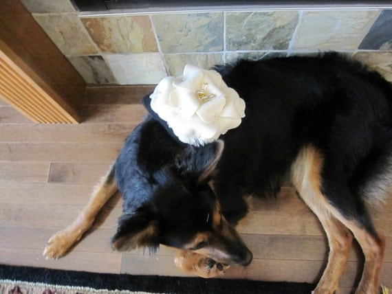 Dog Ring Bearer Pillow Wedding Ivory Black Gold