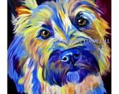 Cairn Terrier, Pet Portrait, DawgArt, Dog Art, Pet Portrait Artist, Colorful Pet Portrait, Cairn Art, Pet Portrait Painting, Art Prints