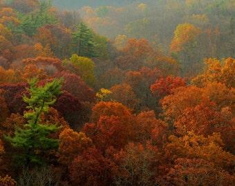 Autumn Foliage and Rolling Hills Landscape Photography High Rocks Vista Fall Color Bucks County Pennsylvania Art Print Home Decor Zen Rust