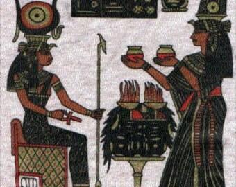 EGYPTIAN ART design t-shirt