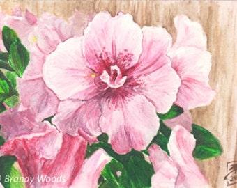 Pink Azalea Flowers Floral ACEO watercolor painting art print - Brandy Woods