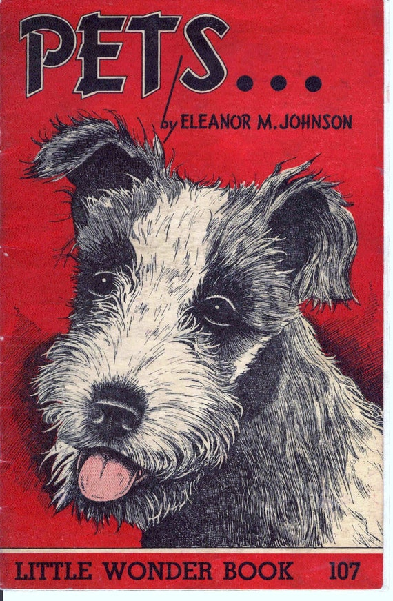 Vintage 1946 Little Wonder book - Pets