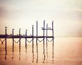 "Fine Art Photography - birds peach beach photography seagulls prints seashore pier brown cream pale ocean, 11x14, 8x10 Photograph, ""Lookout"""
