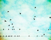 """Bird Photography - blue aqua print birds wire flying white clouds sky nursery photo - 11x14, 24x30 Photograph, """"On Wings of Joy We'll Fly"""""""