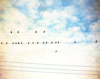 "Bird on Wire Photography, Blue Beige Nursery Print, Clouds Sky Artwork, Bird Photography, Birds in Nature Art Photo, ""Under a Blue Sky"""