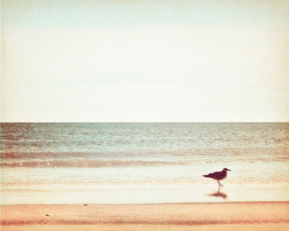 "Beach Photography - seagull bird ocean horizon white photo coastal wall art neutral print sea peach beige - 8x10, 11x14 Photograph, ""Wading"""