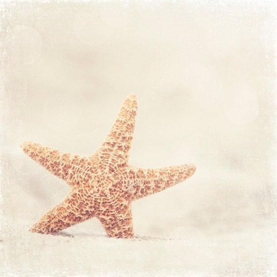 Beach Photography - beach photograph starfish sand cottage seashore sea shore fine photo cream white beige wall art - 10x10, 8x8 Photograph