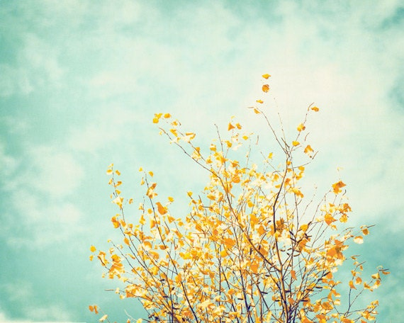 """Nature Photography, tree photography wall art mint green print yellow photography gold teal turquoise blue light botanical, """"Gentle Whisper"""""""