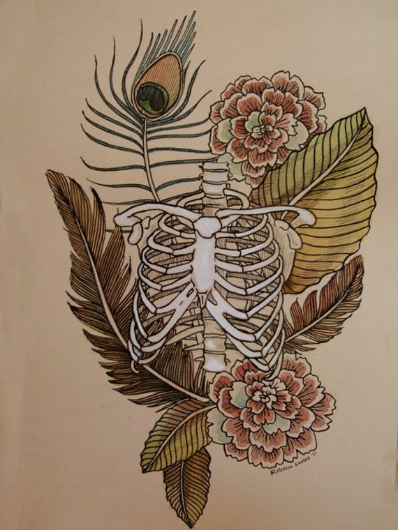 Rib Cage And Flowers Drawing Ribcage With Feathers And