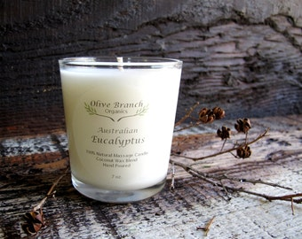 Olive Branch Organics Candle AUSTRALIAN EUCALYPTUS Coconut Wax Candle Essential Oils Vegan All Natural 7 oz.