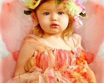 Enchanted Fairy Ware Peaches and Cream  Fairy Dress and Halo set