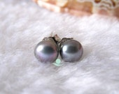 Pearl Earrings - AAA 6.0-6.5mm Dark Gray Freshwater Pearl Stud Earrings - Free shipping
