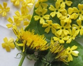 Little Dandelion Yellow Celluloid Flower Bead