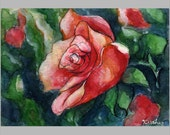 ACEO original -- Red Rose