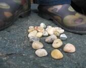 I Love My Rocks Spring Sale- 50 decorative Alaska Beach Rocks