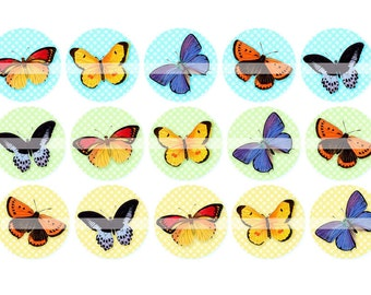 Digital Clipart, instant download, vintage butterflies, butterfly, 1 inch circles, bottlecaps, Digital Collage Sheet (4 by 6 inches)  295