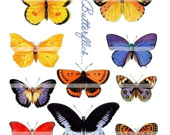 Digital clipart, instant download, vintage Butterflies, yellow, orange, blue, printable--Digital Collage Sheet   483