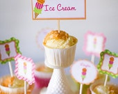 24 Sherbert Collection Ice Cream Shop cupcake toppers custom printed